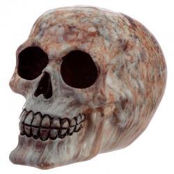 Figura calavera Efecto Marmol - Imagen 1