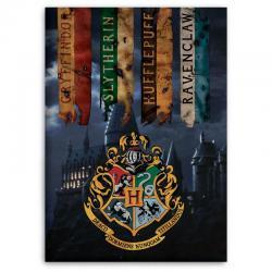 Manta polar Hogwarts Harry Potter - Imagen 1
