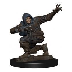Pathfinder Battles Miniatura Premium pre pintado Human Rogue Male Caja (6) - Imagen 1