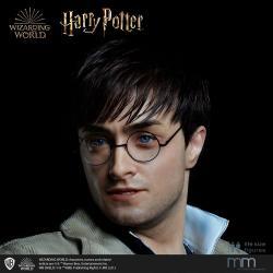 Cabeza de silicona para la estatua de tama?o real Harry Potter MMHP-HPDH-1 - Imagen 1