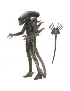 Figura The Alien 40th Anniversary Serie 4 Alien 18cm - Imagen 1