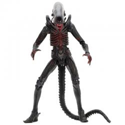 Figura articulada Alien 40 Aniversario Xenomorph 18cm - Imagen 1